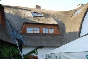 trzcina, strzecha, impregnacja strzechy trzcinowej, dachy z trzciny, dachy ze strzechy (2)