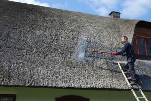 trzcina, strzecha, impregnacja strzechy trzcinowej, dachy z trzciny, dachy ze strzechy (5)