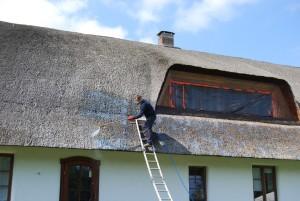 trzcina, strzecha, impregnacja strzechy trzcinowej, dachy z trzciny, dachy ze strzechy (6)