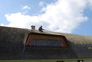 trzcina, strzecha, impregnacja strzechy trzcinowej, dachy z trzciny, dachy ze strzechy (8)